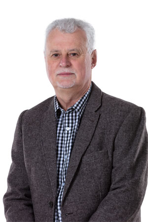 Manfred Bode